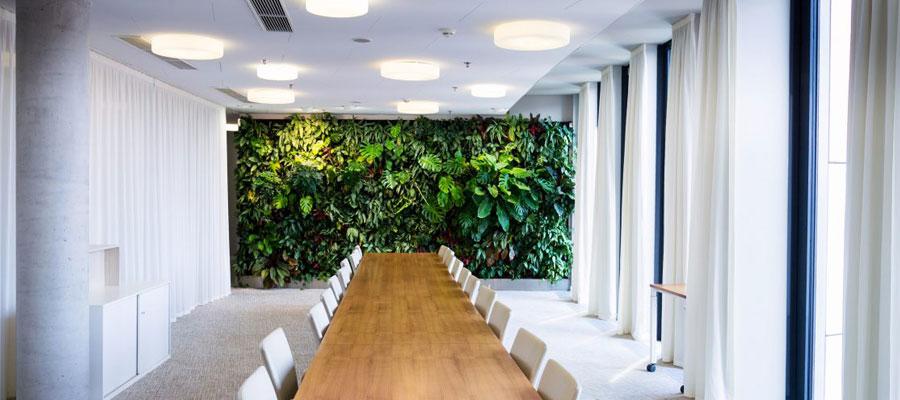 Avantages d'un mur végétal