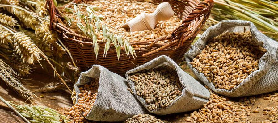 Vente de céréales